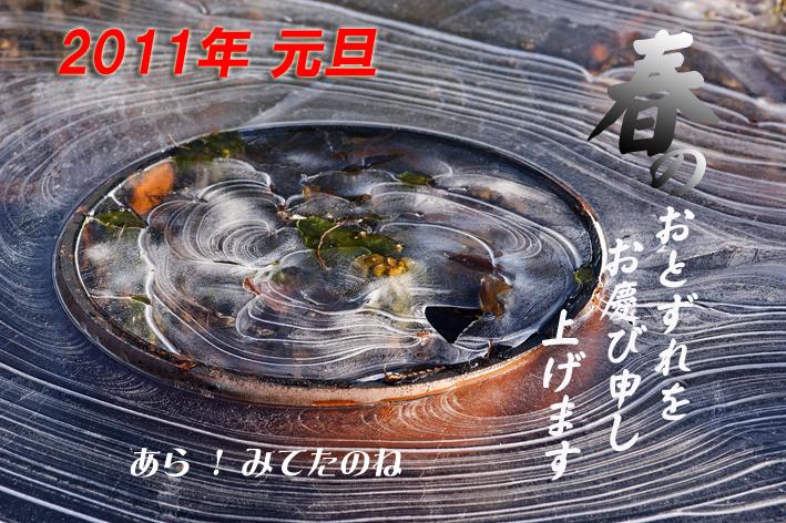 DSC04262.jpg